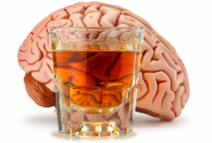 Alcohol Impacts the Body, and Brain